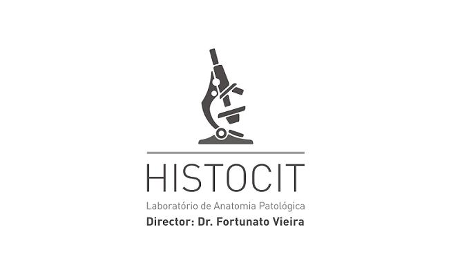 Histocit